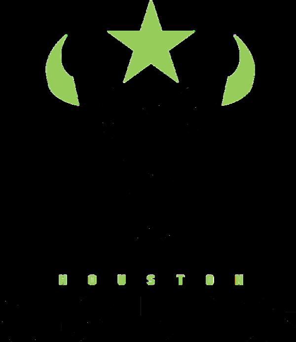 Logo de l'équipe Houston Outlaws