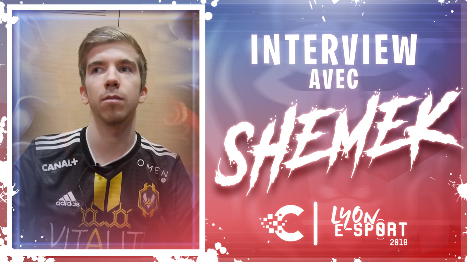 shemek interview