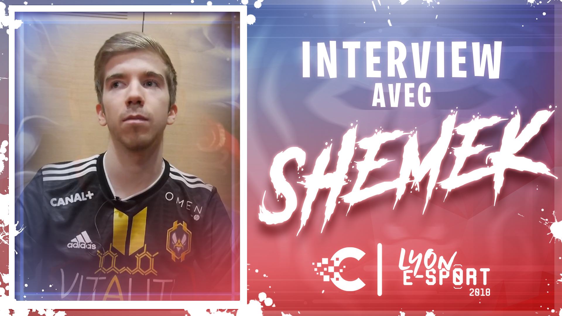 shemek interview