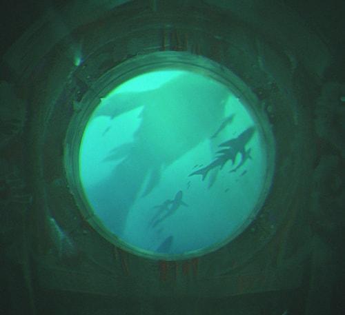 nouveau champion-marin-aquatique-lol