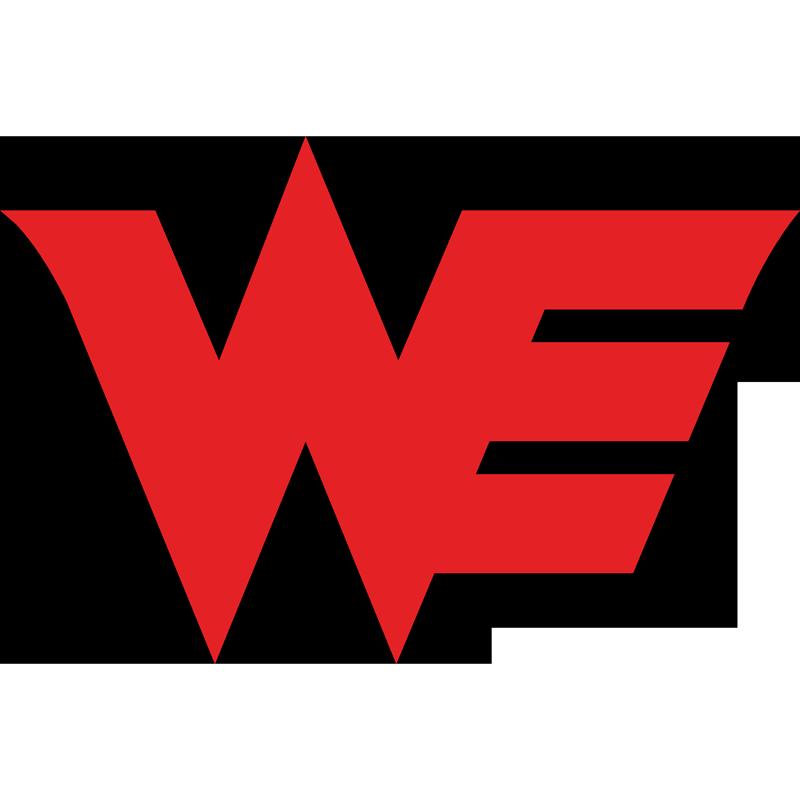Logo de l'équipe Team WE