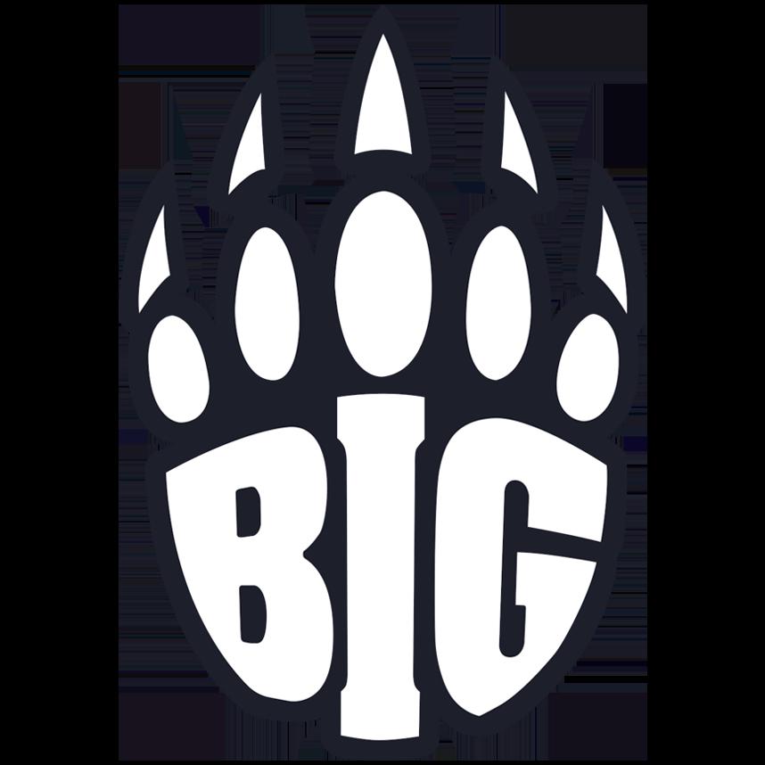 Logo de l'équipe BIG
