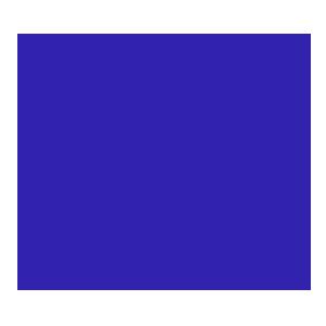 Logo de l'équipe Dominus Esports