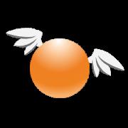 orange sphynx