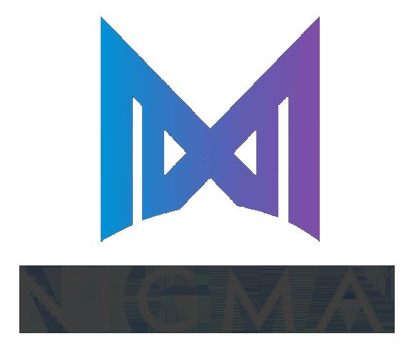 Logo de l'équipe Nigma