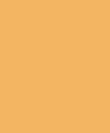 Logo de l'équipe Solar