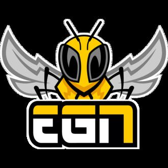 Logo de l'équipe EGN Esports