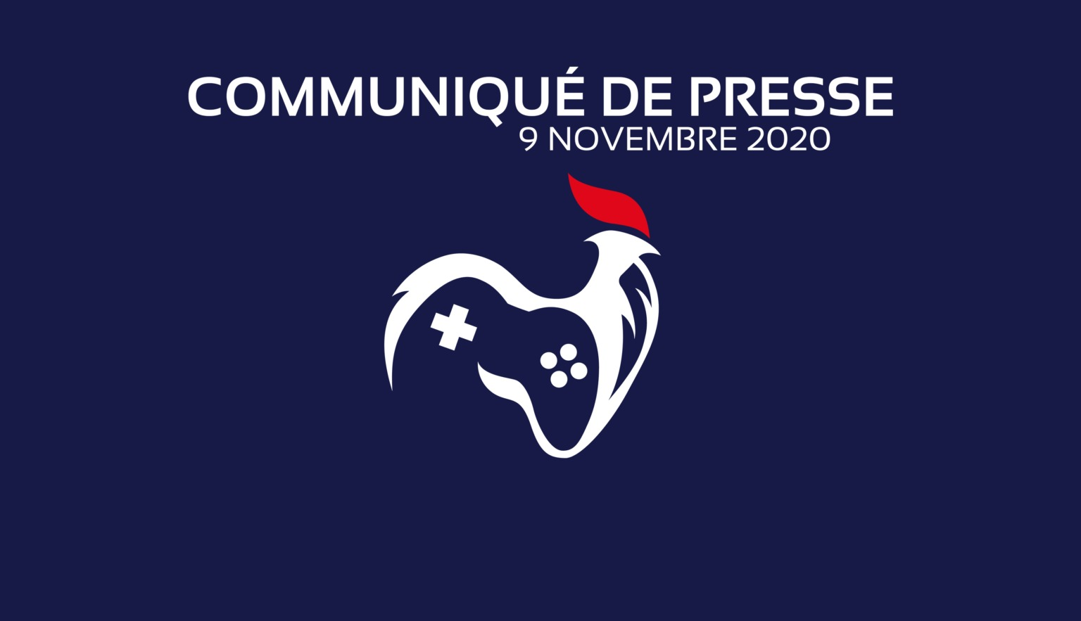 Fédération des Associations Esportives de France